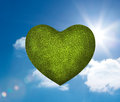 Green heart in the sky with background Stock Images