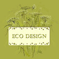 Green herbs floral background and eco label. Vector illustration Royalty Free Stock Photo