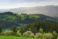 Green highland hills countryside with meadows and forests Stock Photography