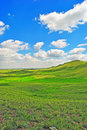 Green hills Stock Image