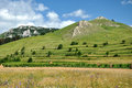 Green hills and countryside meadow in transylvania Royalty Free Stock Photo