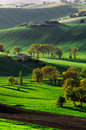 Green hills and fields fiels in the marche region italy Royalty Free Stock Photo