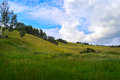 Green hills and fields summer landscape with covered with grass Royalty Free Stock Photo