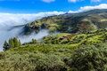 Green hills of Gran Canaria. Spain Royalty Free Stock Photo