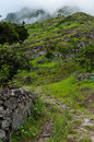 Green humid and rural pathway leading up into misty mountain with clouds in cape verde islands Royalty Free Stock Photography