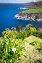 Green island in the Atlantic Ocean, Sao Miguel, Azores, Portugal Royalty Free Stock Photo
