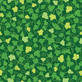 Green ivy plants seamless pattern background vector with hand drawn elements Royalty Free Stock Images