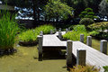 Green japan garden with wooden bridge photo landscape Stock Photo