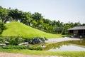 Green of Japanese garden Royalty Free Stock Photo