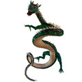 Green jewel dragon a creature of myth and fantasy the is a fierce monster with horns and large teeth Stock Images