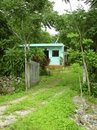 Green jungle little house in Mayan riviera Mexico Royalty Free Stock Photography