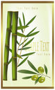 Green label of bamboo and olive Stock Photography