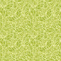 Green lace leaves seamless pattern background vector with hand drawn elements Stock Photography