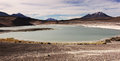 Green lagoon on the border of argentina chile and bolivia Stock Photos