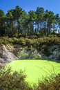 Green lake in Waiotapu, Rotorua, New Zealand Royalty Free Stock Photo