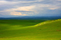 Green landscape - fields Stock Photography