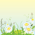 Green landscape flowers and grass meadow vector illustration Stock Photography