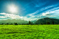 Green landscape in New Zealand Royalty Free Stock Photo