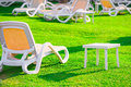 Green lawn and empty sun loungers at dawn Stock Photos