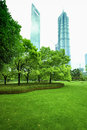 Green lawn in front of shanghai CBD Royalty Free Stock Photography