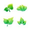 Green leaf eco design friendly nature elegance symbol and natural element ecology organic vector illustration.