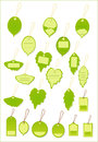 Green leaf label tag Royalty Free Stock Photo