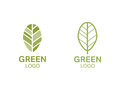 Green leaf logo. Organic concept