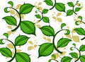 Green leaf pattern illustration on a white background Royalty Free Stock Images