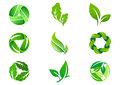 Green Leaf vector logo  design and icon Royalty Free Stock Photo