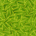 Green leafs for background Royalty Free Stock Photo