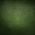 Green leather background or texture Stock Image
