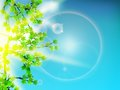 Green leaves background and sun eps Stock Images