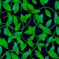 Green leaves creeper Pattern Seamless on a black background