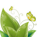 Green leaves design with butterfly Royalty Free Stock Photo