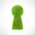 Green leaves keyhole illustration on white Stock Photos
