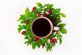 Green leaves and red berries, flowers, Cup of coffee on a white