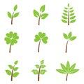 Green leaves - set
