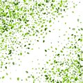 Green Leaves Swirl Vector Wallpaper. Flying Leaf Royalty Free Stock Photo