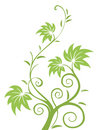 Green leaves and vines pattern Royalty Free Stock Photo