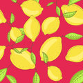 Green lemon fruits with leaf on branch red bright Royalty Free Stock Photo