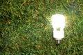 Green Light Bulb Royalty Free Stock Photo