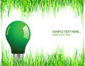Green lightbulb Stock Image