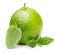 Green lime with mint leaf Royalty Free Stock Photo