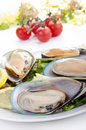 Green lipped mussels with salad Stock Photo
