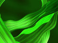 Green liquid 3D abstract Royalty Free Stock Photography