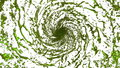 Green Liquid tornado. Beautiful colored juice of whirl. Isolated transparent vortex of liquid like whirlwind 3d