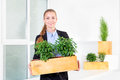 Green living. Attractive young businesswoman standing in modern loft office holding a box with plants. Environmental Royalty Free Stock Photo