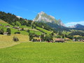 Green living in swiss Alpine landscape Royalty Free Stock Photo