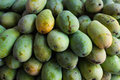 Green mangos nearly ripe in the market Royalty Free Stock Image