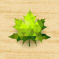 Green maple leaf on abstract wooden background Royalty Free Stock Image